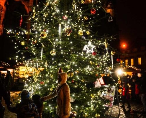 Pod vánočním stromem mohli lidé podpořit sbírku vhozením příspěvku do pokladničky.